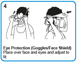Eye Protection (Goggles/Face Shield) - Place over face and eyes and adjust to fit.